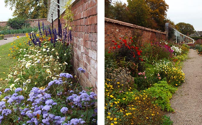 Shake off the cold weather blues by walking through the drifts of flowers